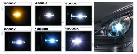 HID Headlights: Positives and Negatives to Consider Before