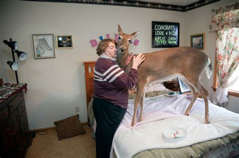 The Best WTF Animals Pictures for 2012 (52 pics) - Picture