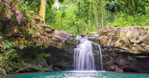 Maui: 5-Hour Waterfall & Rainforest Hike with Picnic Lunch